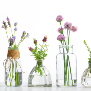 clear apothecary bottles with fresh herbs